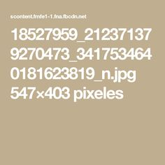 18527959_212371379270473_3417534640181623819_n.jpg 547×403 pixeles
