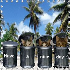 gif -- have a nice day :) Hugs, Gif Greetings, Good Day Quotes, Line Friends, Good Morning Wishes, Pick Me Up, Cute Images, Cute Gif, Happy Weekend
