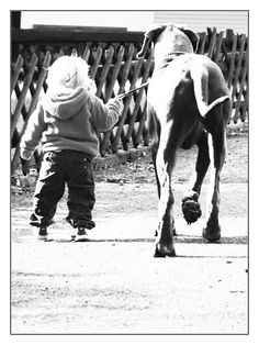 Baby and Great Dane- who is the walker and who is the walkee?
