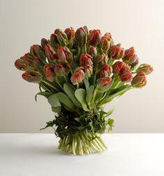 Love the ivy wrapped around the stems. Zita-Elze-Valentine's-Day-Bouquet