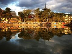 Beautiful Japanese Reflections