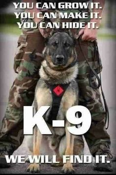 543 Best Police dogs/german shepherds images in 2019