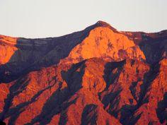 Sandia Mountains at Sunset, NM