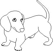 dachshund outline template sketch coloring page