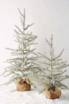Decorative Tabletop Tree   Anthropologie
