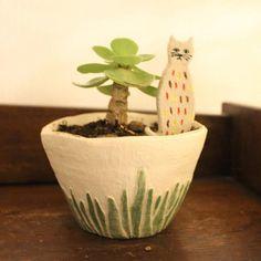 Succulent by a Little Cat