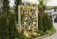 Wall of Wine Bottles Idea