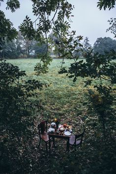 our food stories // gathering in the countryside // glutenfree pumkin cheesecake
