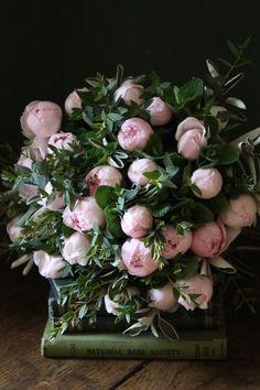 Pretty pink peonies – Greige Design