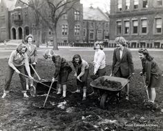 Smith College students making a Victory Garden between Library and Burton Hall, 1943. Photograph by Fred G. Chase.