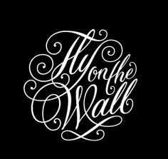 """""""Fly on the Wall"""" - Rob Clarke typography calligraphy hand lettering"""