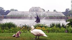 Stroll in the Royal Botanic Gardens at Kew where glasshouses dating from the 19th century still house exotic plants.