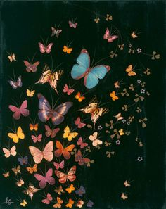 lily greenwood artist | Butterflies: Paintings by Lily Greenwood