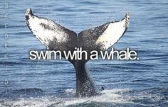 Free willy! (: