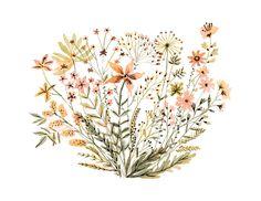 Wildflowers illustration by Vikki Chu