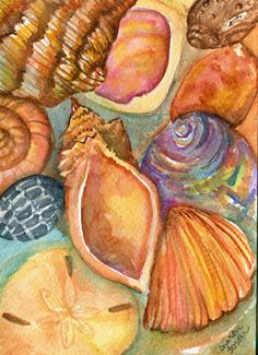 Hey, I found this really awesome Etsy listing at https://www.etsy.com/listing/154153745/shells-watercolor-seashells-painting-5-x