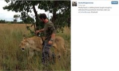 Kevin Richardson - The Lion Whisperer wearing Carhartt Europe Workwear :D