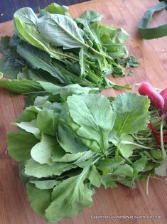Retour de marché, plein de légumes frais, pleins de fanes :) Alors on en profite pour faire une poêlée avec les fanes de radis et les fanes de navet,tant qu'ils sont verts et jolis. On rince, on essore, on hache grossièrement et on fait poêler le tout...