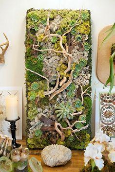 déco bois flotté et plantes succulentes - mur végétal à installer en intérieur, déco en coquillage et bougies