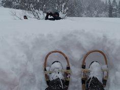 Snowshoe of Japan. Akita of winter of Japan tabi-matagi.com