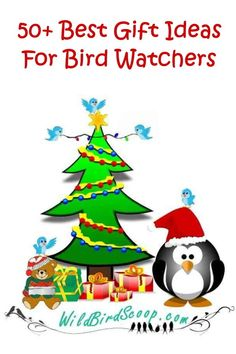 Dozens of the best gifts for bird watchers. Best Hummingbird feeders to birdy gifts. Solve their biggest problems. - Hummingbird Feeder - Ideas of Hummingbird Feeder Glass Hummingbird Feeders, Humming Bird Feeders, Best Christmas Gifts, Christmas Fun, Best Gifts, Bird Feeding Station, How To Attract Hummingbirds, Viewing Wildlife, All Birds