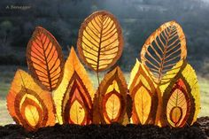 Création sur feuilles Alain Bernegger