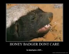 Honey badger doesn't give a sh*t.
