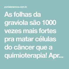 As folhas da graviola são 1000 vezes mais fortes pra matar células do câncer que a quimioterapia! Aprenda a usar – Lá na Roça