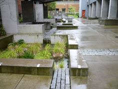 Bioswales, green infrastructure