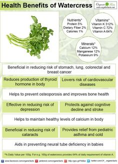 The health benefits of watercress are providing nutrition, boosting immunity, cancer preventive, and thyroid support. These health benefits begin with a single serving of watercress as a dietary supplement.