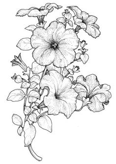 МАСТЕР КЛАСС: Цветочные рисунки для росписи, батика и витража