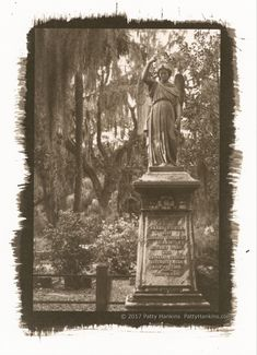 "Aaron Wilbur Graveyard Angel Bonaventure Cemetery Savannah Georgia Palladium Toned Kallitype  © 2017 Patty Hankins  Palladium-toned kallitype of the angel statue on the grave of Aaron Wilbur in Bonaventure Cemetery in Savannah, Georgia  One of a kind print, matted in a single white mat to 11""X14"""