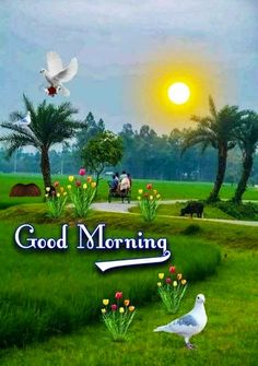 Good Morning Thursday Images, Happy Good Morning Images, Good Morning Flowers Quotes, Good Morning Beautiful Pictures, Good Morning Nature, Cute Good Morning Quotes, Good Morning Cards, Good Morning Photos, Good Morning Gif