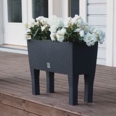 Begonia Begonia, Entryway Tables, Furniture, Home Decor, Decoration Home, Room Decor, Home Furnishings, Home Interior Design, Home Decoration