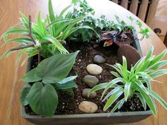 Easter Garden from Thoughts from the Sheepfold thoughts, fun idea, sheepfold, gardens, easter garden