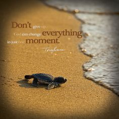 Don't give up.  God can change everything in just one moment. - Tony Evans TonyEvans.org
