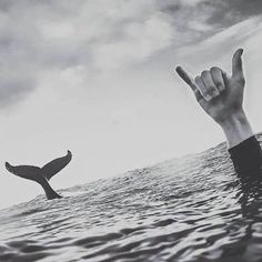 Imagen de ocean, whale, and black and white