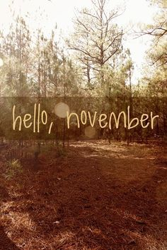 hello, november - Love this idea for each month of Project Life by millicent Seasons Months, Days And Months, Months In A Year, Mabon, New Month Wishes, Hello November, November Born, Sweet November, Happy November