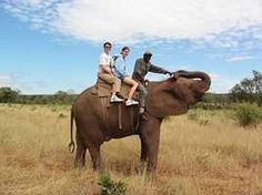Elephant Back Safaris in the Pilanesberg National park.  http://www.south-african-hotels.com/hotels/shepherds-tree-game-lodge-pilanesberg/