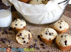 Nut Free and Gluten Free Chocolate Chip Muffins