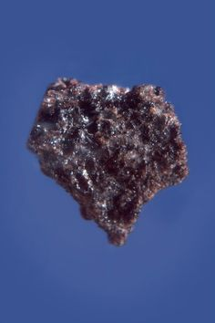 In 1973, Richard Nixon donated four fragments of lunar rock to the Belgian people. These were brought back by the Apollo 17 mission in December 1972. This stone is 18 mm long.  -Mineral Hall- (Photo: Royal Belgian Institute of Natural Sciences, RBINS)