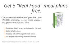 100 days of real food. REAL food ideas for kids lunches. Options for dairy, gluten and peanut free.