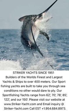 Fishing Yachts, Fishing Boats, Yacht World, Yacht Builders, Yacht Design, Sport Fishing, Luxury Yachts, Rolls Royce, Billionaire