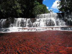 jasper-creek-venezuela-7