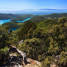 See 20 photos from 166 visitors to Mljet. Mljet Croatia, Europe, River, Mountains, Lakes, Nature, Colours, Outdoor, Beautiful
