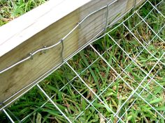 Dog proof fence
