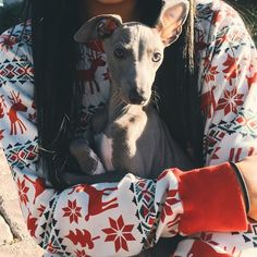 Kylie Jenner's Christmas dreams came true when she got her Italian Greyhound Norman on December 25, 2014