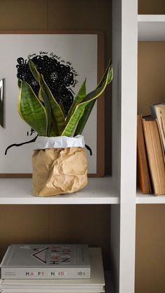 grillodesigns on Instagram: EASY WATERPROOF PAPER PLANT BAGS! Passing through very quickly with this plant bag tutorial! If you're looking for ways to use up any… Planter Ideas, Diy Planters, Projects For Kids, Crafts For Kids, Plant Bags, Paper Plants, Fall Diy, Diy Hacks, Diy Tutorial