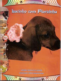 Moda Pet - claudia Rabello - Álbuns da web do Picasa