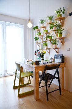 toito architekti: Kohút a Zuzana. Rekonštrukcia malého bytu.
